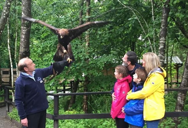 The Young Family at the Loch Lomond Bird of Prey Centre