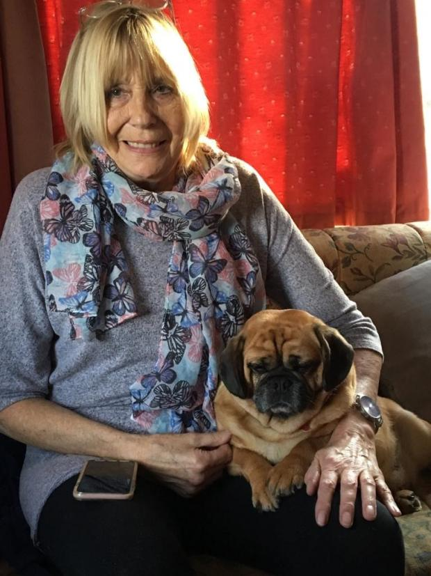 Dumbarton and Vale of Leven Reporter: Sandra Rolfe and her Crossbreed Penny, a mix of Pug and King Charles Spaniel. Picture: Vets Now