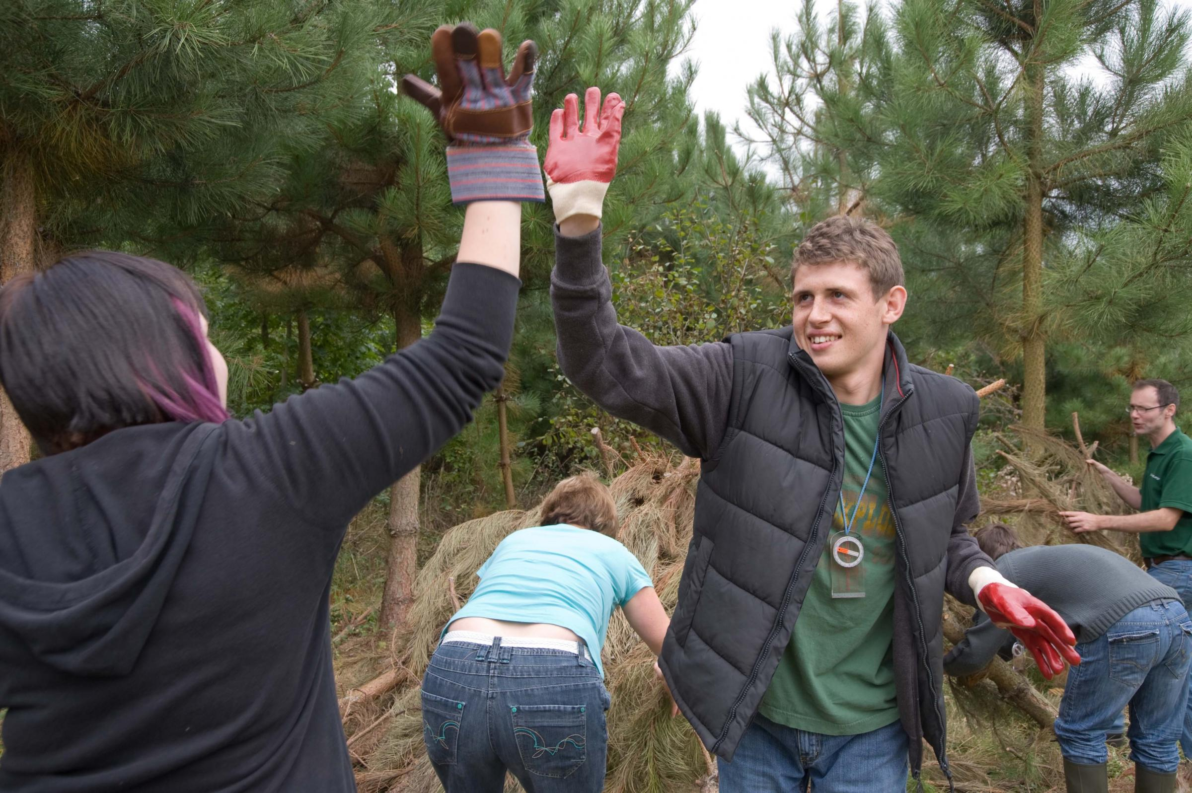 Young adults working in woodland projects