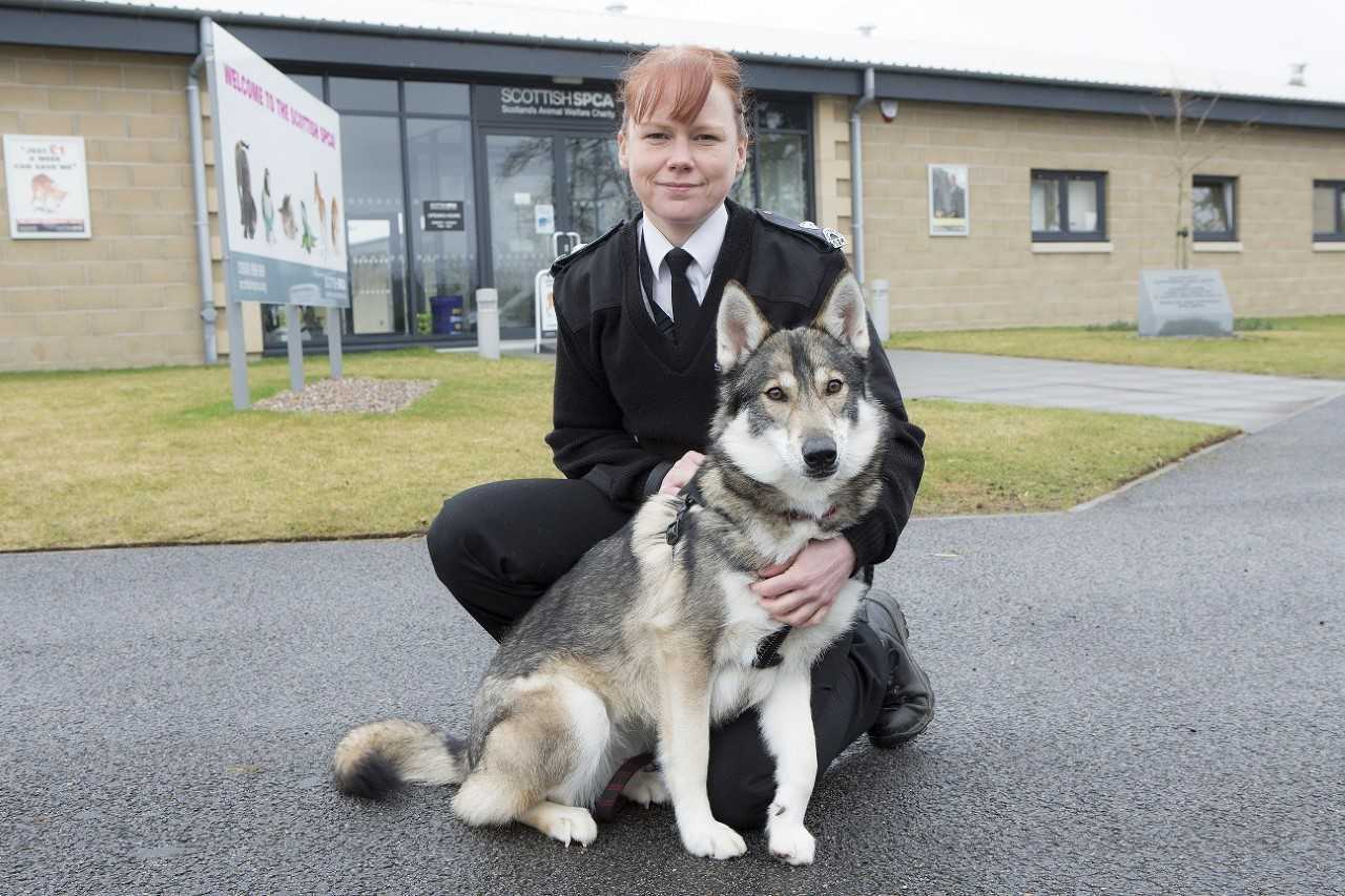 A handler and dog at the SSPCA rehoming centre in Dumbarton