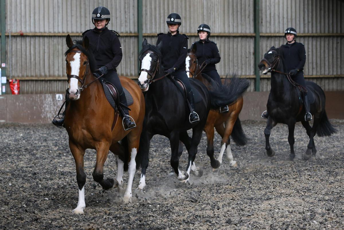 Mounted police could be used to help tackle anti-social behaviour in Balloch Park this summer