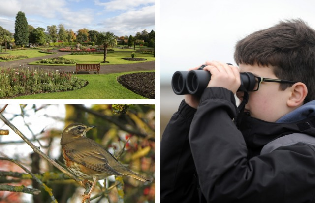 A bird-watching activity is taking place at Levengrove Park